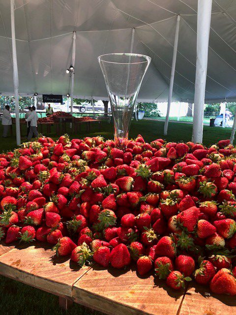 FreshPoint | Strawberries and Champagne: A Vanderbilt tradition