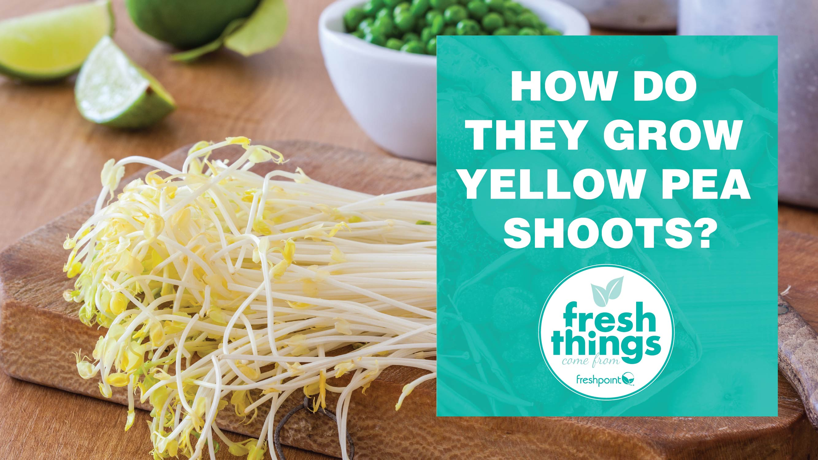 freshpoint-produce-yellow pea shoots