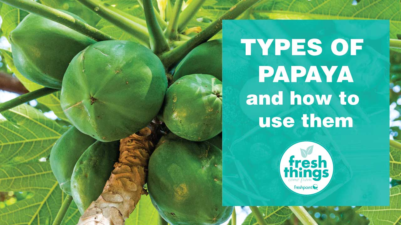 freshpoint-produce-types-of-papaya-and-how-to-use-them