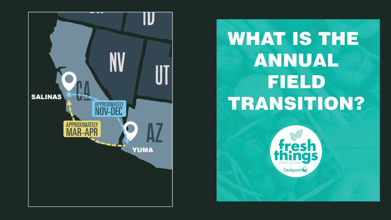annual-field-transition-freshpoint-produce